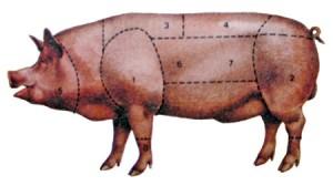 carne-suina-300x168