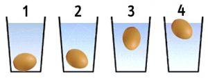 controllare le uova