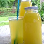 Succo d'ananas Bimby