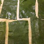lasagne-verdi-con-radicchio-e-gorgonzola_11